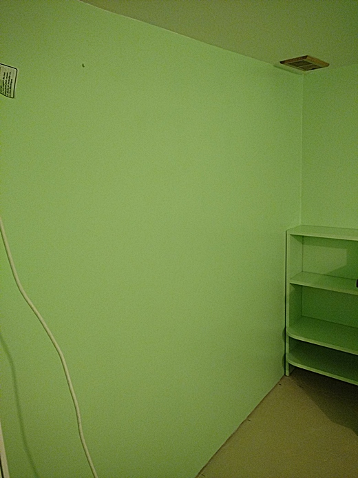 Name:  orchid room 2.jpg Views: 228 Size:  168.7 KB