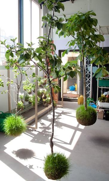 Name:  string garden 5.jpg Views: 18070 Size:  80.5 KB