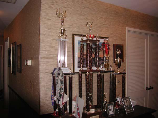 Name:  Trophies.jpg Views: 124 Size:  67.4 KB