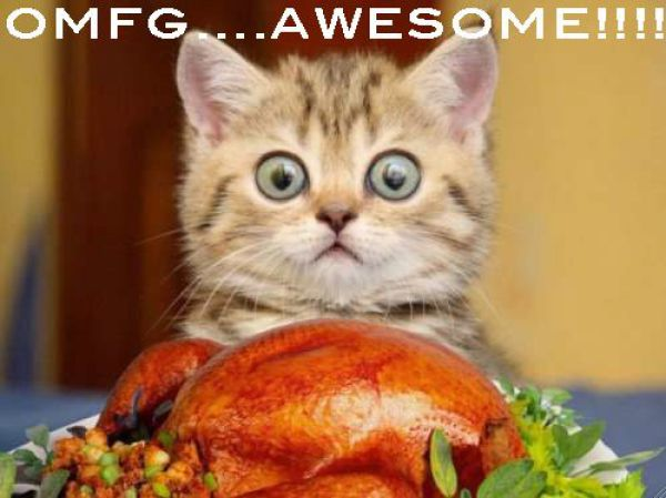 Name:  funny_thanksgiving_moments_640_30.jpg Views: 151 Size:  40.6 KB