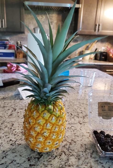 Name:  pineapple.jpg Views: 63 Size:  307.8 KB