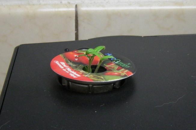 Name:  tomato3.jpg Views: 233 Size:  54.1 KB