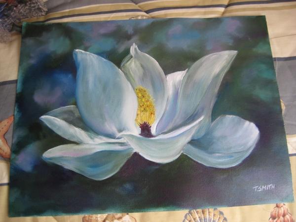 Name:  magnolia.jpg Views: 188 Size:  124.4 KB