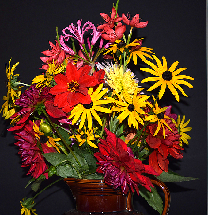 Name:  Autumn--flowers.jpg