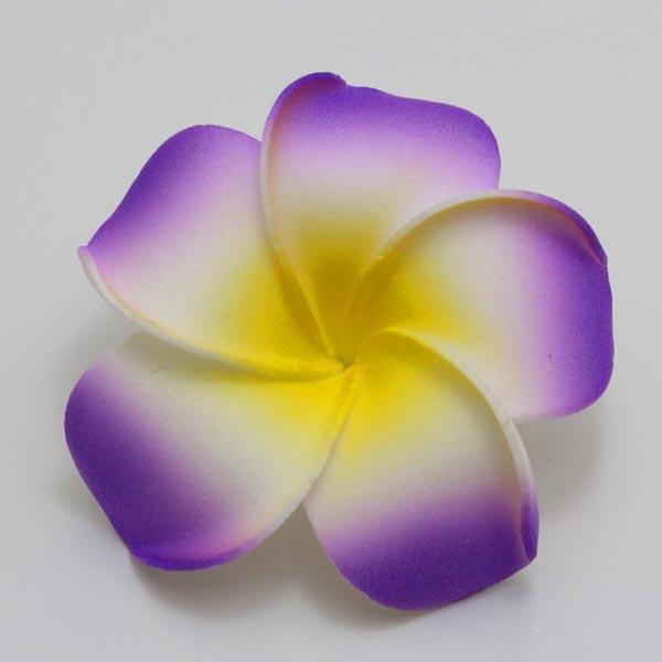Name:  Lavender.jpg Views: 520 Size:  44.8 KB