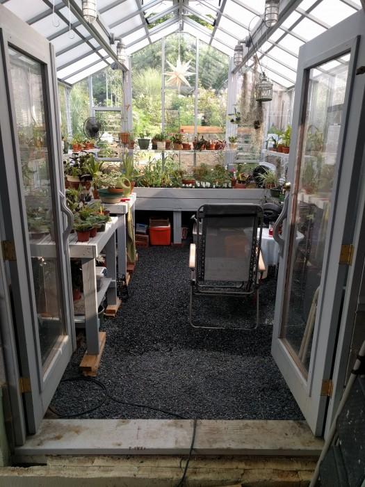 Name:  greenhouse072018esized.jpg Views: 135 Size:  135.6 KB